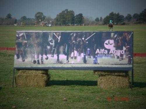 ALFA  AGRO  POLO  TEAM: Banner